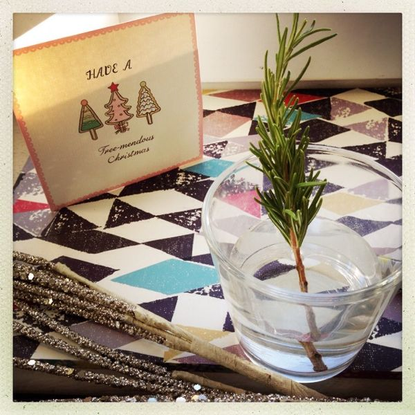 Grow Your Own Rosemary